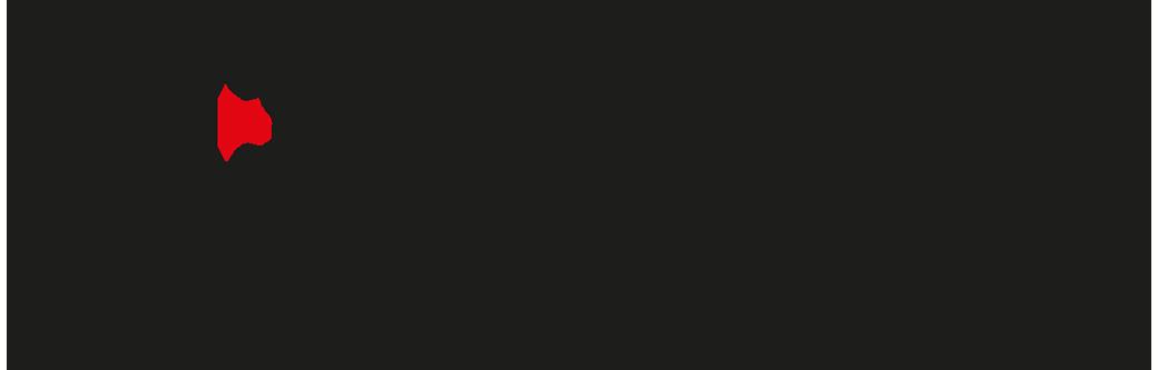 BI Select – Importeur Simon Electric Logo